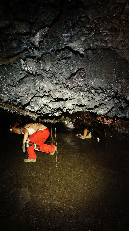 Tunnels de lave rando volcan 29 tunnels de lave r union for Ouvre la fenetre translation
