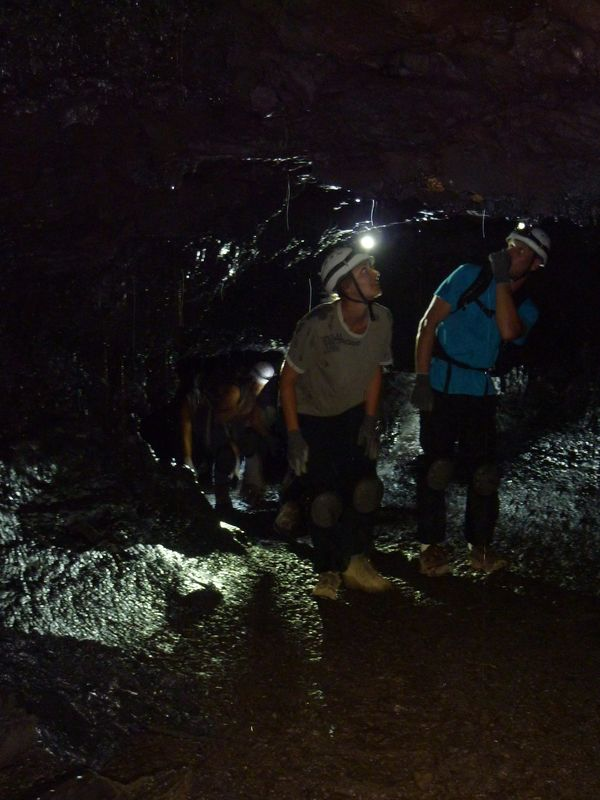 Tunnels de lave 974 22 tunnels de lave r union for Ouvre la fenetre translation